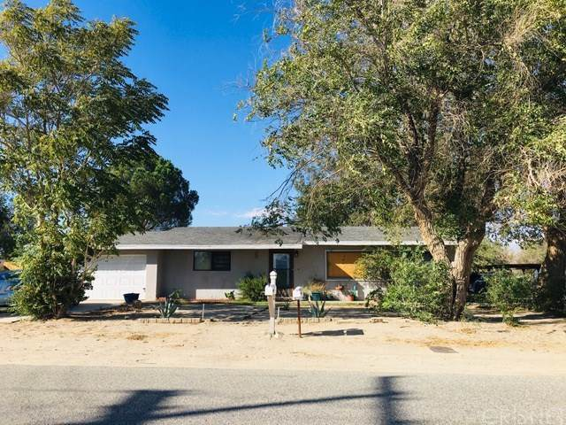 10729 E Avenue R6, Littlerock, CA 93543 (#SR19231420) :: Z Team OC Real Estate