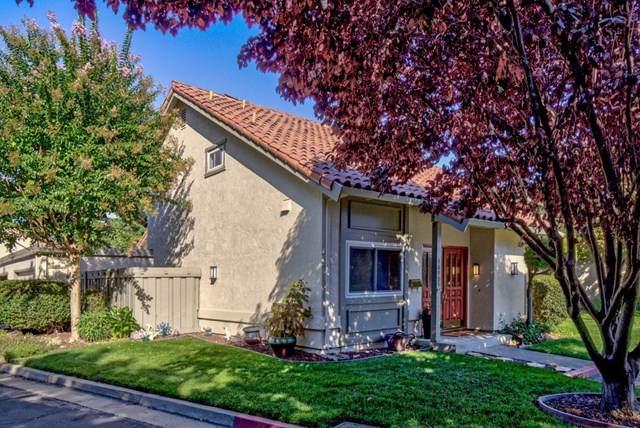 10905 Sweet Oak Street, Cupertino, CA 95014 (#ML81770734) :: J1 Realty Group