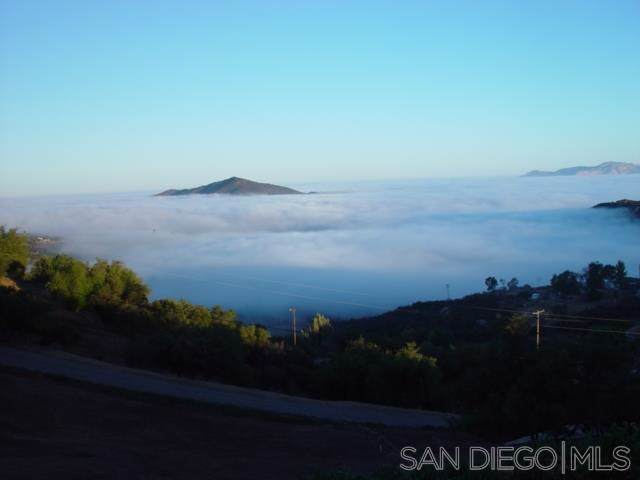 17093 Skyline Truck Trail, Jamul, CA 91935 (#190053912) :: Steele Canyon Realty