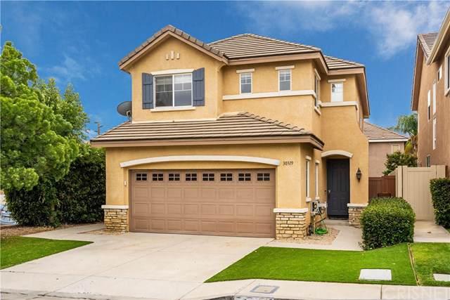 30319 Cedar Oak Lane, Castaic, CA 91384 (#SR19230460) :: The Marelly Group | Compass
