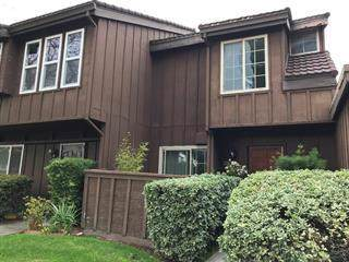 2381 Lava Drive, San Jose, CA 95133 (#ML81770973) :: Legacy 15 Real Estate Brokers