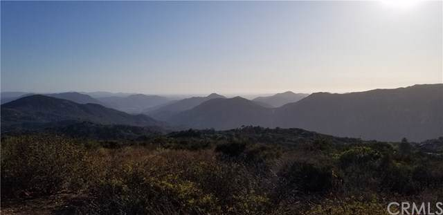 38257 Lost Horizon Drive, Pala, CA 92059 (#SW19234293) :: J1 Realty Group