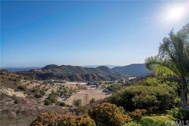 28012 Modjeska Grade Road, Modjeska Canyon, CA 92676 (#PW19225059) :: The Costantino Group | Cal American Homes and Realty