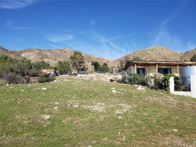 11217 Indian Mesa Drive, Kagel Canyon, CA 91342 (#SR19235256) :: J1 Realty Group
