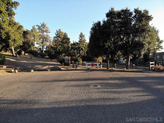 8301 Foothill Blvd, Pine Valley, CA 91962 (#190054643) :: J1 Realty Group