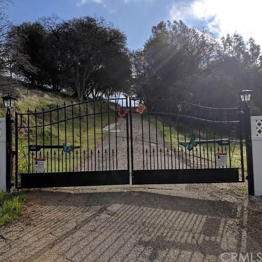 5588 Bear Trap Drive, Mariposa, CA 95338 (#TR19235769) :: Z Team OC Real Estate