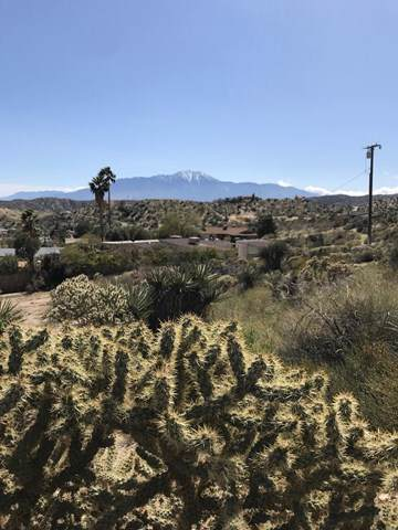 48953 Vista Drive, Morongo Valley, CA 92256 (#219030720PS) :: Sperry Residential Group