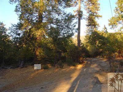 22900 Eagles Nest Trail, Idyllwild, CA 92549 (#219030441DA) :: J1 Realty Group