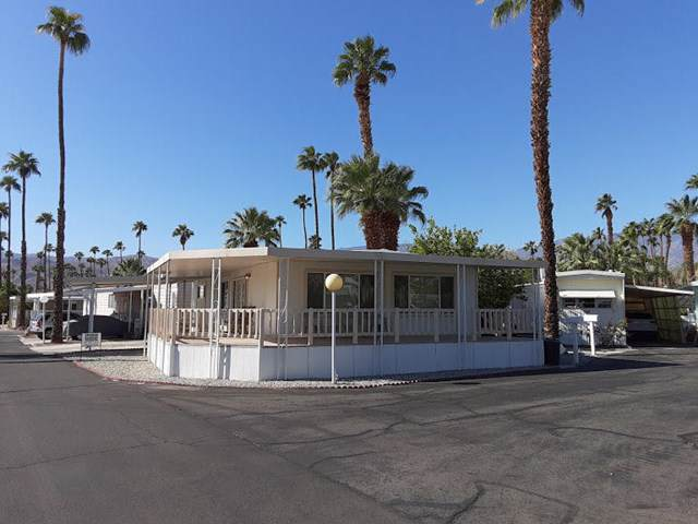 141 Coyote, Cathedral City, CA 92234 (#219030884DA) :: J1 Realty Group