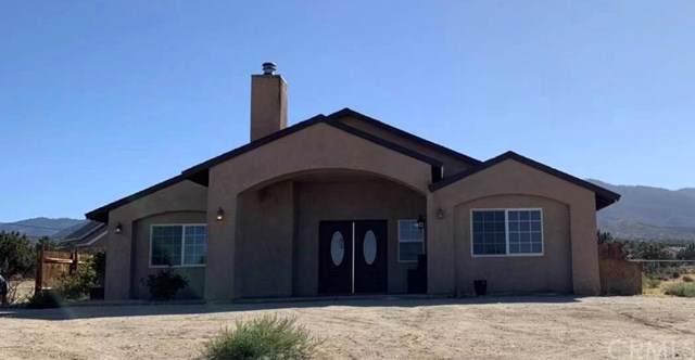 10070 Silver Rock Road, Pinon Hills, CA 92372 (#TR19236422) :: Provident Real Estate
