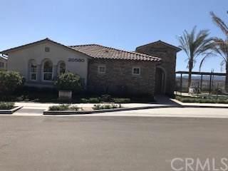 20558 Martingale, Saugus, CA 91350 (#CV19236446) :: RE/MAX Estate Properties