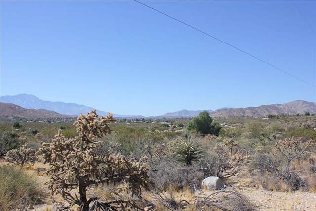 234 Northridge Road, Morongo Valley, CA 92256 (#JT19236544) :: Sperry Residential Group