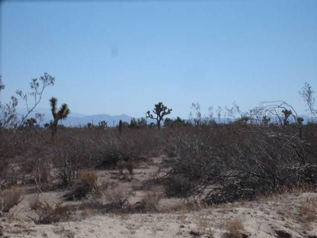 0 Monte Vista (Aster) Road - Photo 1