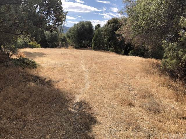 40970 Jean Road E, Oakhurst, CA 93644 (#FR19237245) :: Rogers Realty Group/Berkshire Hathaway HomeServices California Properties