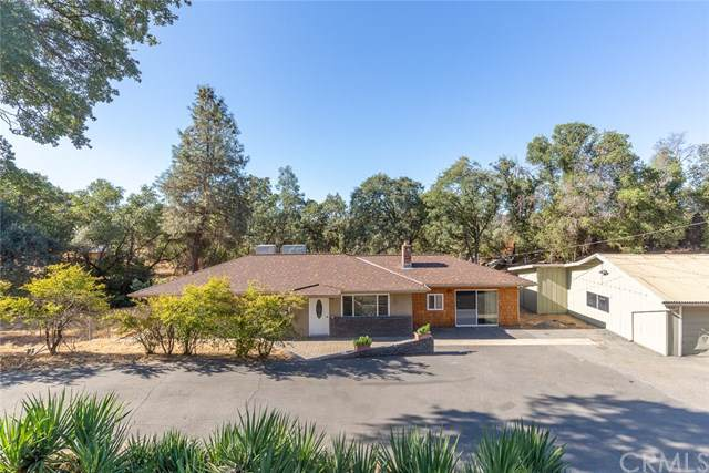 4579 Varain Road, Mariposa, CA 95338 (#MP19237115) :: Sperry Residential Group