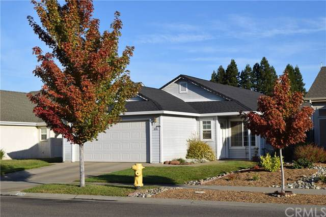 1076 Viceroy Drive, Chico, CA 95973 (#SN19238123) :: The Laffins Real Estate Team