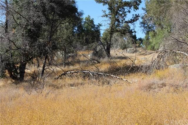 4086 Ben Hur Road, Mariposa, CA 95338 (#FR19238271) :: Z Team OC Real Estate