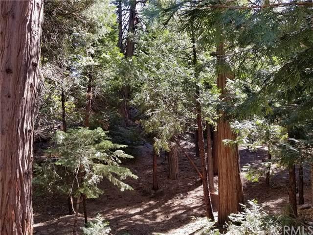 223 Cedar Ridge Drive, Lake Arrowhead, CA 92352 (#EV19239414) :: Allison James Estates and Homes