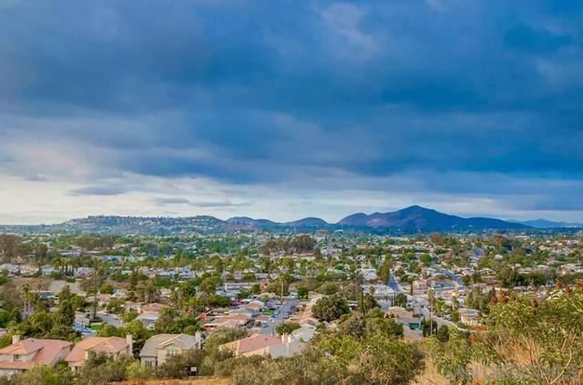 7338 Orien Ave, La Mesa, CA 91941 (#190055714) :: J1 Realty Group