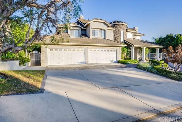 21545 Dunrobin Way, Yorba Linda, CA 92887 (#PW19239743) :: Z Team OC Real Estate