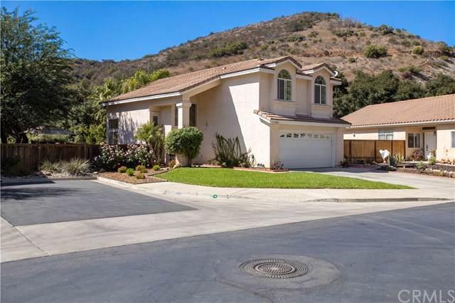 29876 Platanus Drive, Escondido, CA 92026 (#ND19240549) :: Rogers Realty Group/Berkshire Hathaway HomeServices California Properties