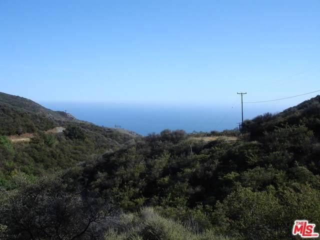 0 Baller Motorway, Malibu, CA 90265 (#19519604) :: Z Team OC Real Estate