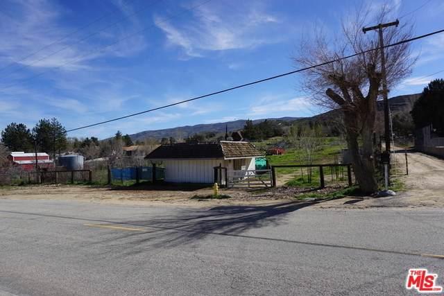 9258 Leona Avenue, Leona Valley, CA 93551 (#19519842) :: J1 Realty Group