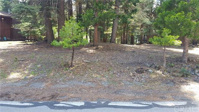 1265 Peninsula Drive, Lake Almanor, CA 96137 (#SN19241261) :: Pam Spadafore & Associates
