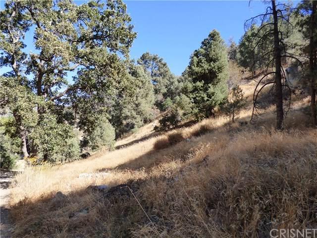 0 Valley Trail, Frazier Park, CA 93225 (#SR19241486) :: Z Team OC Real Estate