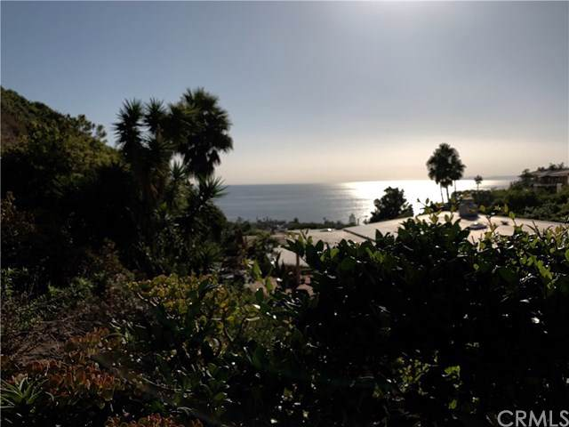 1150 Skyline Drive, Laguna Beach, CA 92651 (#LG19241718) :: The Danae Aballi Team