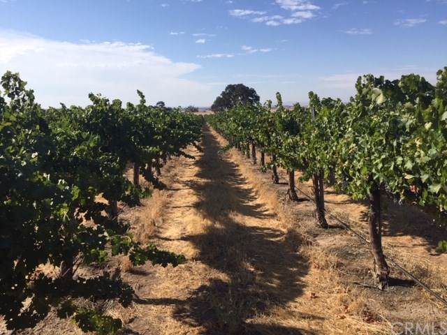 Tower Oaks Vineyard, Paso Robles, CA 93446 (#SP19241732) :: RE/MAX Parkside Real Estate