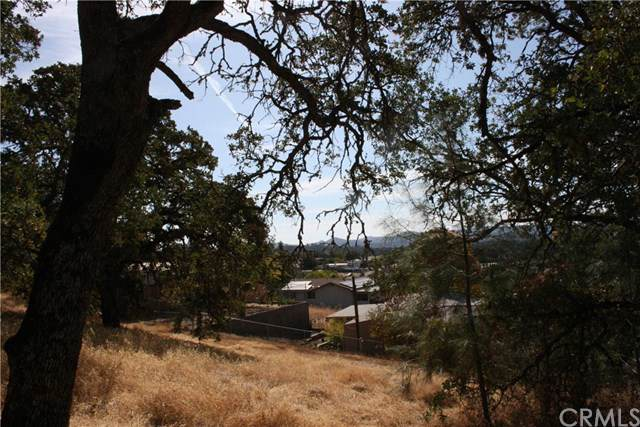 15737 Woods Avenue, Clearlake, CA 95422 (#LC19241920) :: Berkshire Hathaway Home Services California Properties