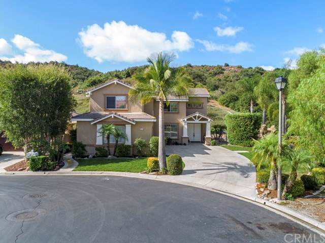 1 Roadrunner Court, Trabuco Canyon, CA 92679 (#OC19241197) :: Legacy 15 Real Estate Brokers
