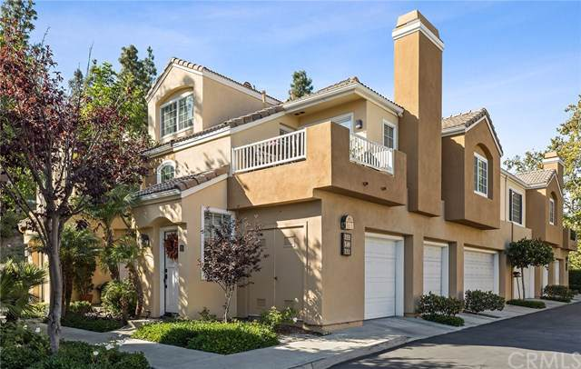 153 Sandcastle, Aliso Viejo, CA 92656 (#OC19242279) :: The Laffins Real Estate Team