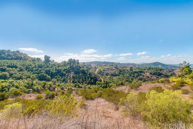 0 Wilt Road, Fallbrook, CA 92028 (#SW19242380) :: The Ashley Cooper Team