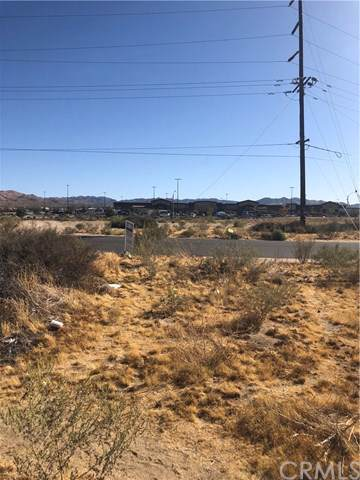 6474 Del Monte Avenue, Yucca Valley, CA 92284 (#JT19242704) :: The Costantino Group | Cal American Homes and Realty