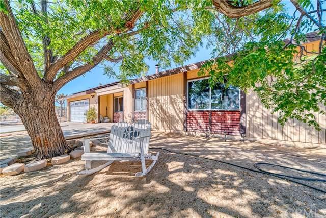 4388 Camarilla Avenue, Yucca Valley, CA 92284 (#JT19239945) :: RE/MAX Empire Properties