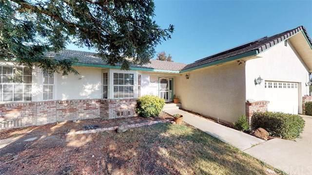 4235 Drews Way, Orland, CA 95963 (#SN19238347) :: The Brad Korb Real Estate Group