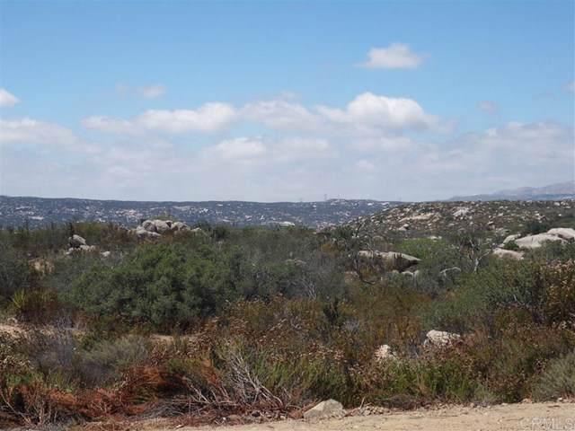 164 La Posta Circle, Pine Valley, CA 91962 (#190056570) :: The Brad Korb Real Estate Group