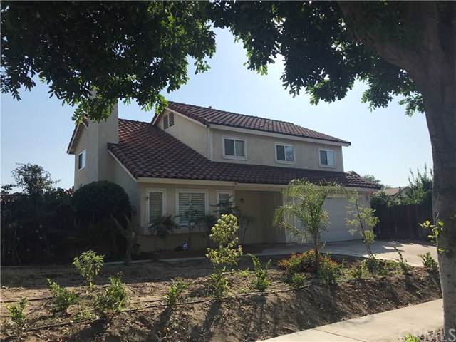 205 Elise Drive, Redlands, CA 92374 (#CV19243383) :: McKee Real Estate Group Powered By Realty Masters & Associates