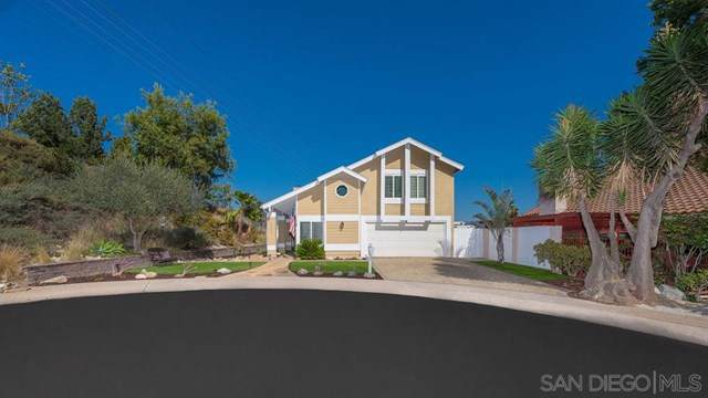 10500 Villa Bonita, Spring Valley, CA 91978 (#190056612) :: Provident Real Estate