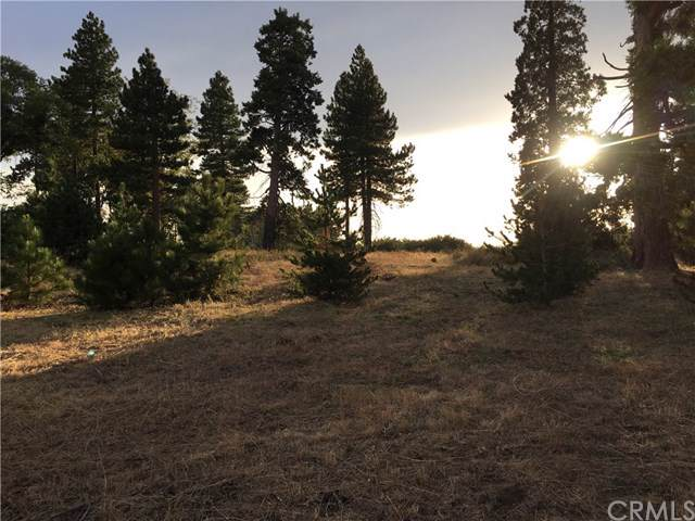 0 Old City Creek Road, Running Springs, CA 92382 (#IN19243518) :: Better Living SoCal