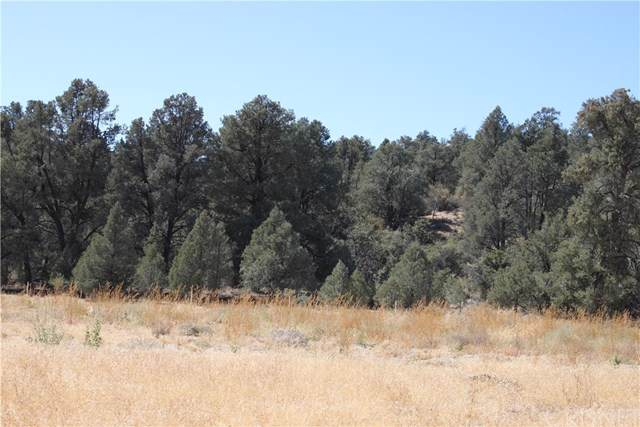 13224 Boy Scout Camp Road, Frazier Park, CA 93225 (#SR19243152) :: RE/MAX Parkside Real Estate