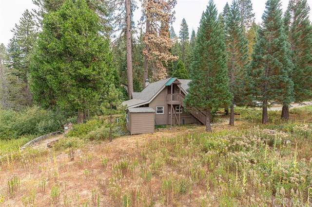 1251 Cedar, Fish Camp, CA 93623 (#FR19243734) :: Twiss Realty