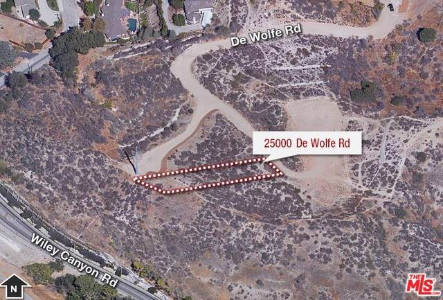 25000 De Wolfe Road, Newhall, CA 91321 (#19520758) :: Sperry Residential Group