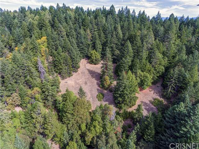 0 Parcel 64 Spring Creek (Blue Lake Rd), Willits, CA  (#SR19244632) :: J1 Realty Group