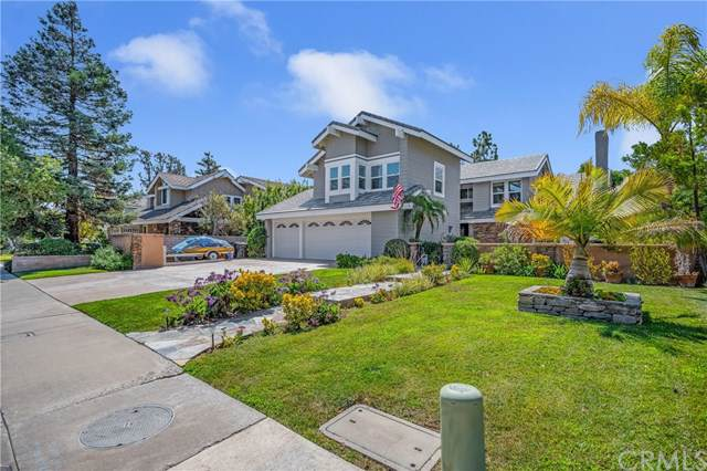 27742 Paseo Esteban, San Juan Capistrano, CA 92675 (#OC19216256) :: That Brooke Chik Real Estate