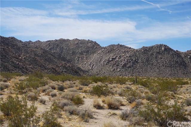 66000 Baseline Road, Joshua Tree, CA 92252 (#JT19234155) :: J1 Realty Group