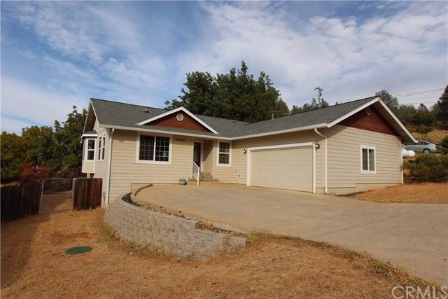 10030 El Capitan Way, Kelseyville, CA 95451 (#LC19234916) :: The Danae Aballi Team