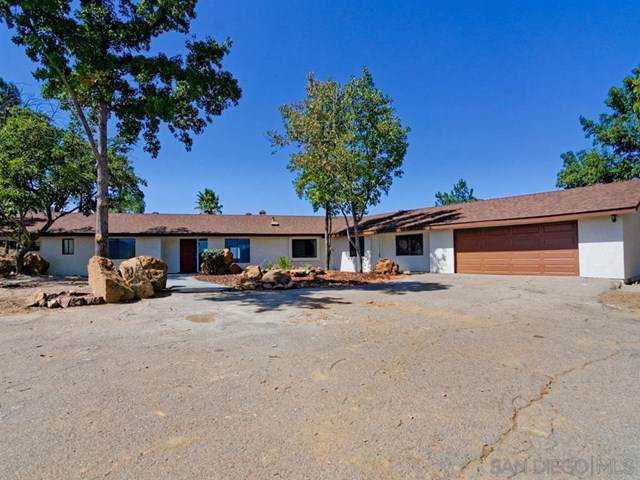 23516 Bell Bluff Truck Trl, Alpine, CA 91901 (#190057051) :: J1 Realty Group